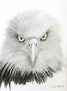 116 best images about Eagles on Pinterest | Birds, Wooden ...