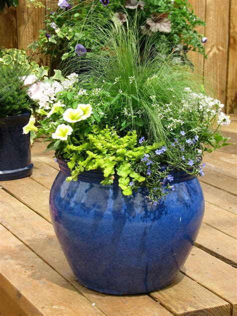 large container gardening ideas annual flower garden