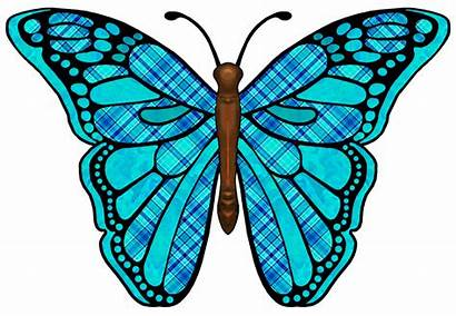 Butterfly Wings Clipart Clipground 20clipart Fantasy