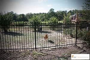animal fencing fence workshoptm With dog fencing options