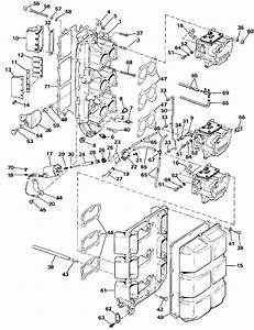 evinrude intake manifold parts for 1986 175hp e175tlcdr With diagram of 1986 e70elcdc evinrude intake manifold diagram and parts