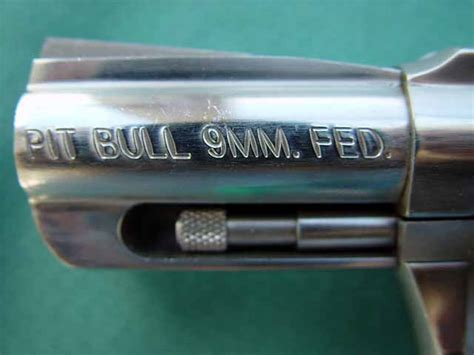 update020909/Charter Arms Pit Bull 9mm Federal /DSC00471