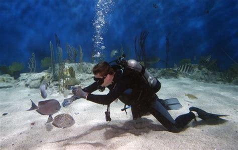 aquariums   dive