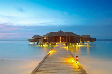lily beach resort spa  maldives architecture design
