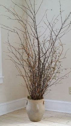 containers for kitchen cabinets floor vase with birch branches and lighted branches on a 5683