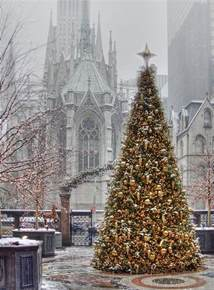 christmas tree in the new york palace hotel by the st patrick s cathedral in new york city