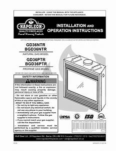 Napoleon Gas Fireplace Manual