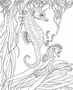 free ocean coloring pages - get this ocean coloring pages free 2756g