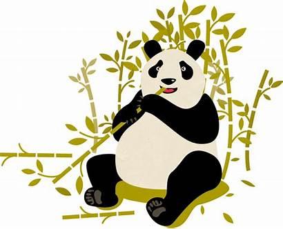 Pandas Wwf Panda Giant Wild Protected Areas