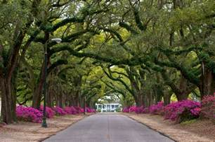 wedding venues in mobile al hill college colleges of distinction colleges of distinction