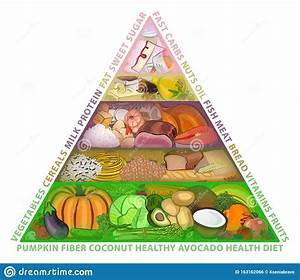 The Food Guide Pyramid  Diet  Vector Illustration Stock