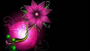 Abstract Pink Flower HD Wallpaper 1080p