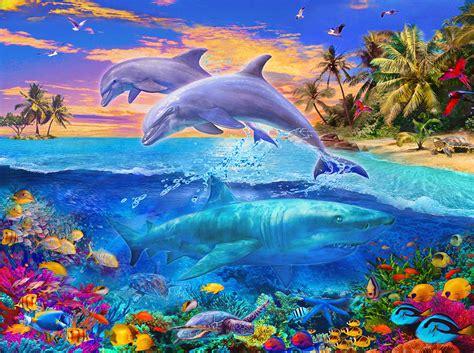 shark  dolphin paradise photograph  jan patrik krasny