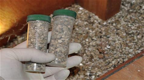 vermiculite great insulation asbestos safety