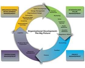 Organizational Development Model