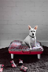 20 fun house design ideas for your pets With super cute dog beds