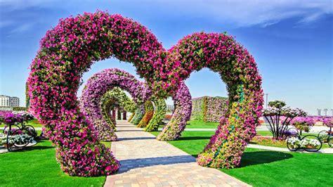 Garden Of Flowers by Dubai Miracle Garden Showcases 45 Million Flowers