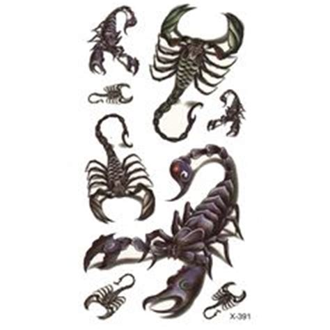 How To Draw A Scorpion Step 5  Draken Pinterest