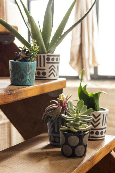 plantes pour chambre plante verte dans une chambre plante pour salon plante