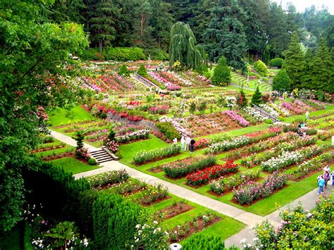 garden portland oregon happy 100th birthday international test garden