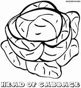 Cabbage Coloring Pages Food Colorings sketch template