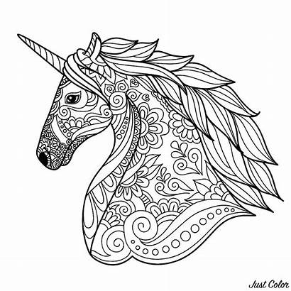 Unicorn Coloring Head Simple Unicorns Pages Adult