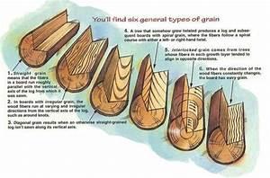 Understanding Wood Grain