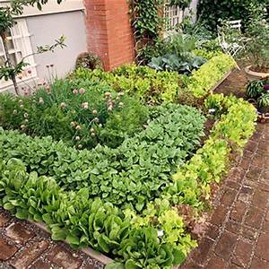 QuotHow Does Your Garden Growquot Patio Vegetable Garden Plan