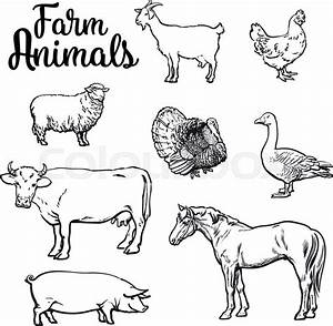 Farm Animals Black and White | How To Format Cover Letter