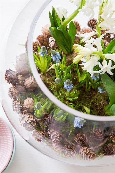 fruehlingserwachen mit blumenzwiebeln dekorieren deko