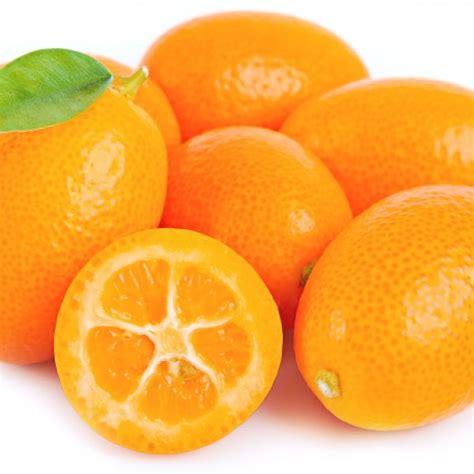 kumquat assortment special fruit