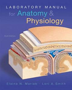Laboratory Manual For Anatomy  U0026 Physiology    Edition 6 By