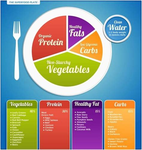 proportion cuisine proportions food paleo style