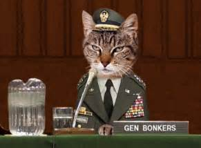 war on string may be unwinnable says cat general the