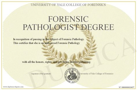Forensic Science Bachelor Degree Forensic Science Salary. Research On Cancer Treatment. Automotive Schools In Ga Renters Insurance Il. Holiday Family Photo Ideas Easy Spanish Tapas. Top Small Business Websites Dell M4500 Bios. Divorce Lawyers Norfolk Va Personal Ftp Site. National Credit Agency Unique Website Traffic. Geico Insurance Quotes Online. How To Get A New Health Insurance Card