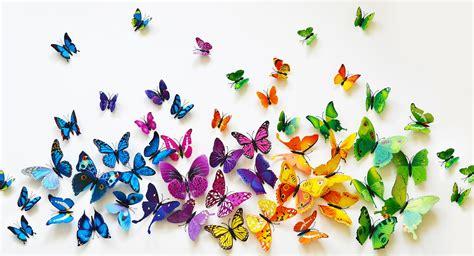 com set of 12 3d pvc butterflies for 5 99