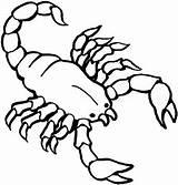 Scorpion Coloring Sheet Printable sketch template