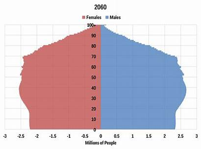 Population 2060 Pyramid Businessinsider