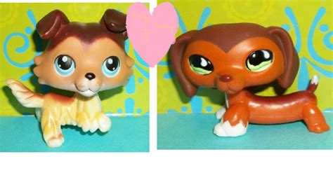 Lps Popular, For Sophiegtv! And My Lps! Images Sage