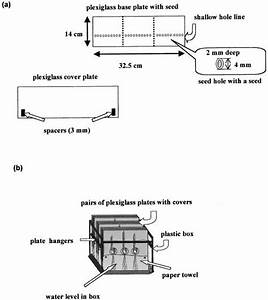 Diagram Of  A  Transparent Plexiglass Plate Used In Exp  3