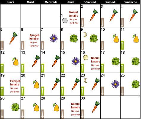 cuisiner feuilles de radis magazine petit jardin n 116 septembre 2016 jardinage