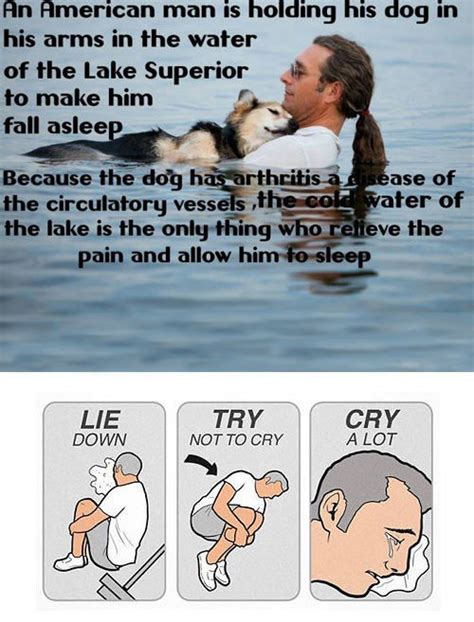 The Feels Meme - lie down try not to cry cry a lot an emotional meme collection craveonline