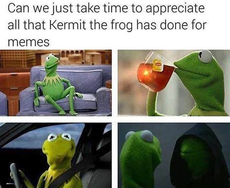 Kermit The Frog Memes - funny pictures of the day 32 pics