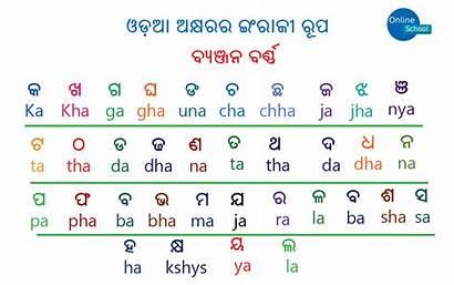 Odia Alphabet English Vowels Categories