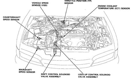 Transmission For 2002 Civic Ex Oxygen Sensor Wiring Diagram by Speedometer Odometer Cruise Not Working 96 Accord Honda