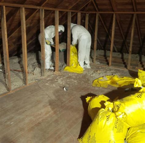 black mold  asbestos  battle  toxic materials
