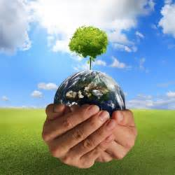 importance of days related to environment millennium india education foundation