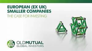 Old Mutual Europe (Ex UK) Smaller Companies Fund - The ...