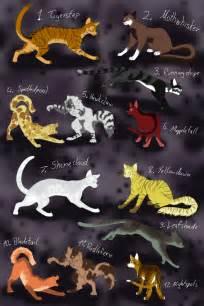 Warrior Cats Fan
