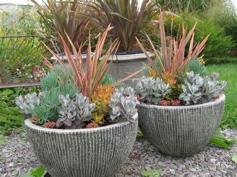 get potted on container garden container gardening and planters